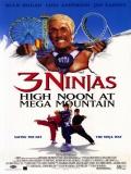 Tres Pequeños Ninjas 4 - 1998