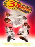 Tres Pequeños Ninjas 3 - 1995
