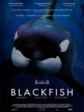 Blackfish - 2013