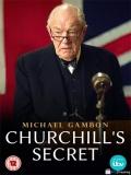 Churchill's Secret - 2016