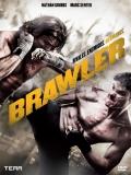 Brawler - 2011