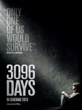 3096 Days (3096 Días) - 2013