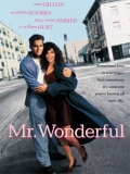 Mr. Wonderful (Con Quién Caso A Mi Mujer) - 1993