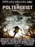 The Poltergeist Of Borley Forest - 2013