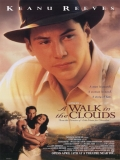A Walk In The Clouds (Un Paseo Por Las Nubes) - 1995