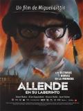 Allende En Su Laberinto - 2014