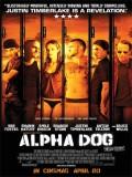 Alpha Dog (Juegos Prohibidos) - 2006