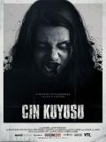 Cin Kuyusu - 2015