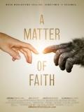 A Matter Of Faith (Es Cuestión De Fe) - 2014