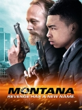 Montana - 2014