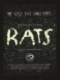 Rats - 2016