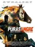 Purasangre - 2016