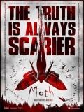 Moth - 2016