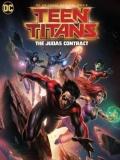 Teen Titans: The Judas Contract - 2017