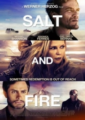 Salt And Fire poster
