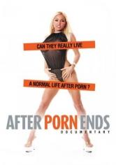 Cuando Se Acaba El Porno (2010)