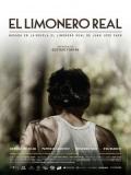 El Limonero Real - 2016