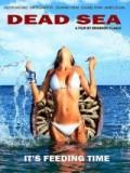 Dead Sea - 2014