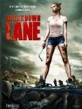 Breakdown Lane - 2017