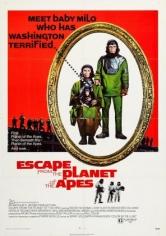 Escape Del Planeta De Los Simios (1971)