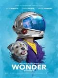 Wonder (Extraordinario) - 2017