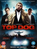 Top Dog - 2014