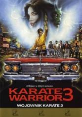 Karate Kimura 3 (1991)