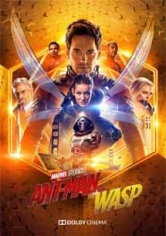 Ant-Man And The Wasp(El Hombre Hormiga Y La Avispa) poster