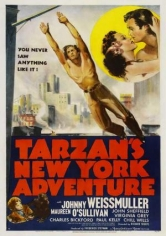 Tarzan's New York Adventure(Tarzan's New York Adventure) poster