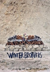 Winter Brothers poster