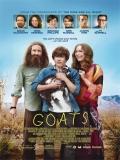 Goats - 2012