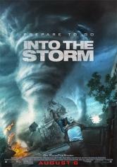 Into The Storm (En El Ojo De La Tormenta) (2014)
