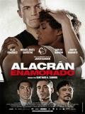 Alacrán Enamorado - 2013