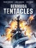 Bermuda Tentacles - 2014