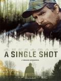 A Single Shot - 2013