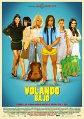 Volando Bajo (2014)
