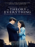 The Theory Of Everything - 2014