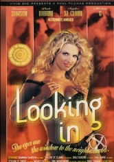 Looking In (American Voyeur ) (2002)