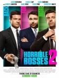 Horrible Bosses 2 - 2014