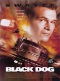 Black Dog (Alto Riesgo) - 1998