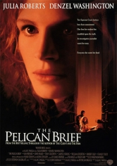 The Pelican Brief (1993)