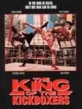 Retroceder Nunca Rendirse Jamas 5: The King Of The Kickboxers - 1990