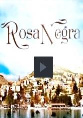 Rosa Negra 91