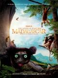 Island Of Lemurs: Madagascar - 2014