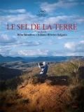 Le Sel De La Terre (La Sal De La Tierra) - 2014