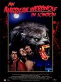 Un Hombre Lobo Americano En Londres - 1981