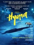 Hyena - 2014