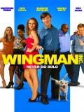 Wingman Inc. - 2015
