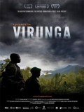 Virunga - 2014
