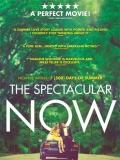 The Spectacular Now (Aquí Y Ahora) - 2013